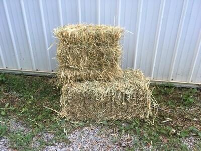 Straw Bale (Porch Size) $4.99