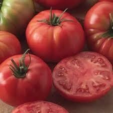 Tomato Champion (gallon vegetable pot)
