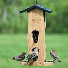 Natures Way Cedar Wave Bird Feeder $34.99