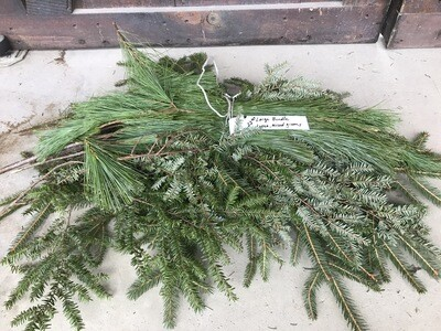 Mixed Greens/Pine (Large Bunch) $22.99 -Holiday