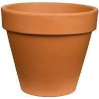 """3021 Terra Cotta  6"""" Standard Pot $2.49"""