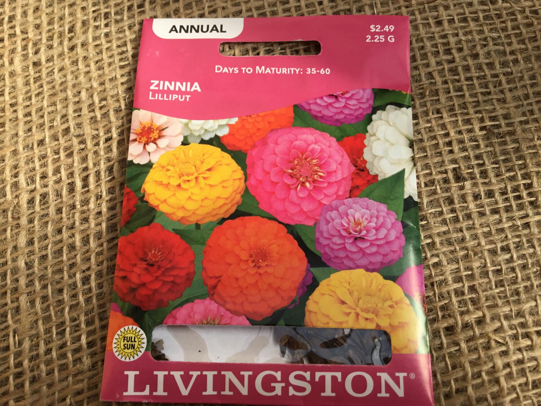 Zinnia Lilliput (Seed) $2.49