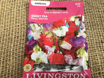 Sweet Pea Royal Mix (Seed)
