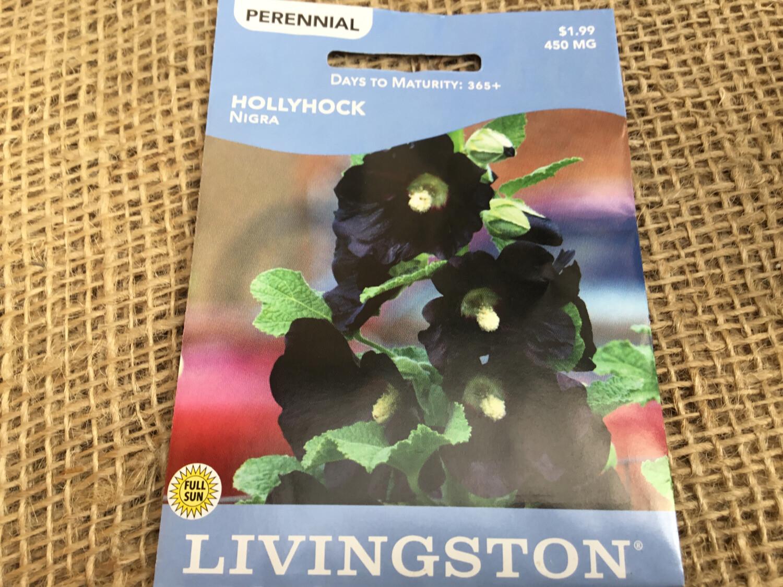 Hollyhock NIGRA (Seed) $1.99