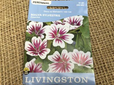 Malva Sylverstris Zebrina (Seed) $1.89