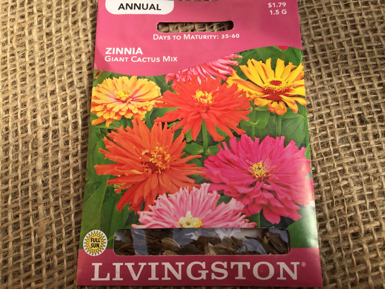 Zinnia Giant Cactus Mix (Seed) $1.79