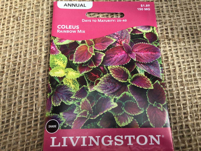 Coleus (Seed) $1.89