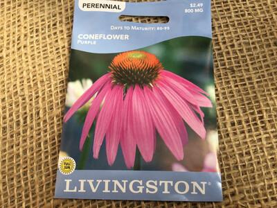 Coneflower Purple (Seed) $2.49