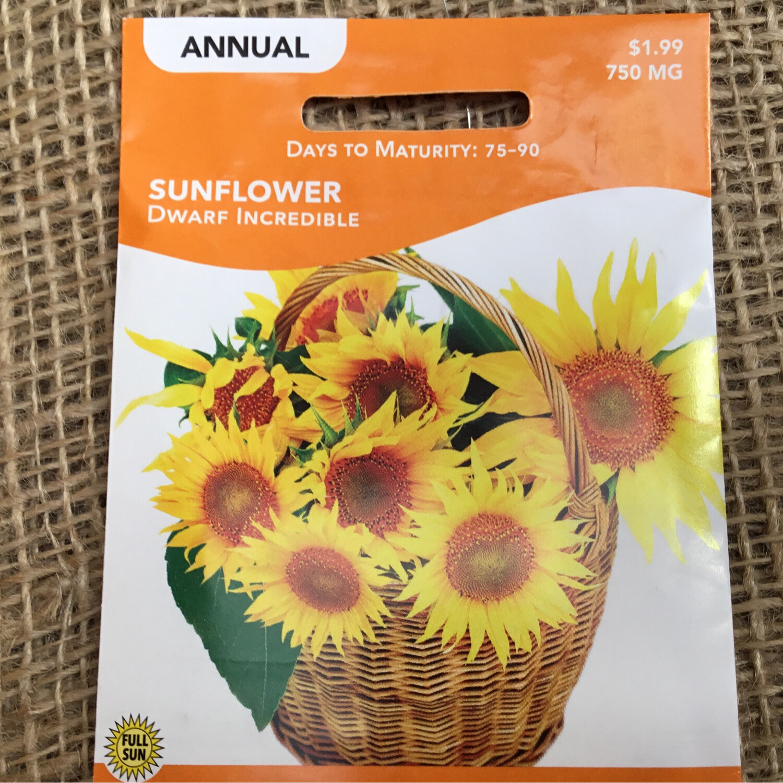 Sunflower Dwarf Incredible (Seed) $1.99