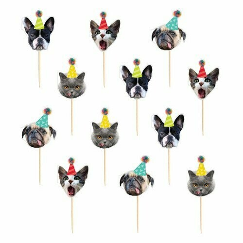 Pick Cat & Dog Birthday 24ct