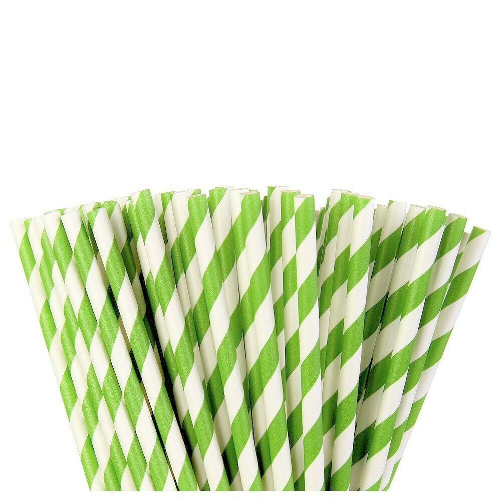 Paper Straw Kiwi 24ct