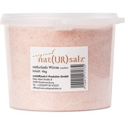 Grosspackung Nat(UR)salz unjodiert 4 kg - Natursalz ohne Jod