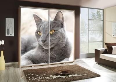 Schiebetürenschrank / Kleiderschrank mit Schiebetür PENELOPA 205cm Motiv: Katze / Cat
