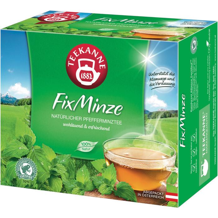 Grosspackung Teekanne FixMinze12 x 40er = 480 Beutel