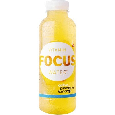 Grosspackung Focus Water Pineapple / Mango 12 x 0,5 l = 6 Liter