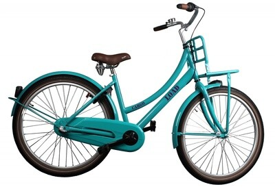 Kinder-Fahrrad Velo Bike Fun Cargo Load 26 Zoll 43 cm Mädchen 3G Rücktrittbremse Grün