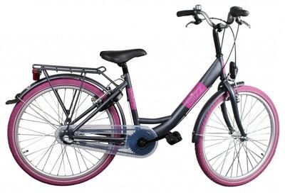 Kinder-Fahrrad Velo Bike Fun Blizz 24 Zoll 39 cm Mädchen 3G Felgenbremse Mattgrau
