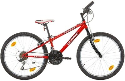 Kinder-Fahrrad Velo Mountainbike Marlin Cedric 24 Zoll 28 cm Jungen 18G Felgenbremse Rot