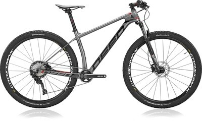 Fahrrad Velo Mountainbike Deed Vector Pro 293 29 Zoll Herren 11G Hydraulisch Scheibenbremse Grau/Schwarz