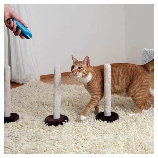 Outlet: Trixie Cat Agility Slalom und Reifen