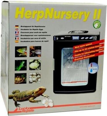 Lucky Reptile Inkubator Brutkasten Herp Nursery II 25 L 49 cm schwarz für Terrarium, Reptilien etc,.
