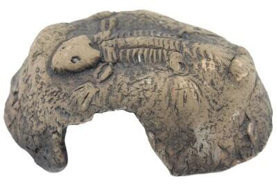 CeramicNature Terrarium Fossil 12 x 11 cm Keramikbraun