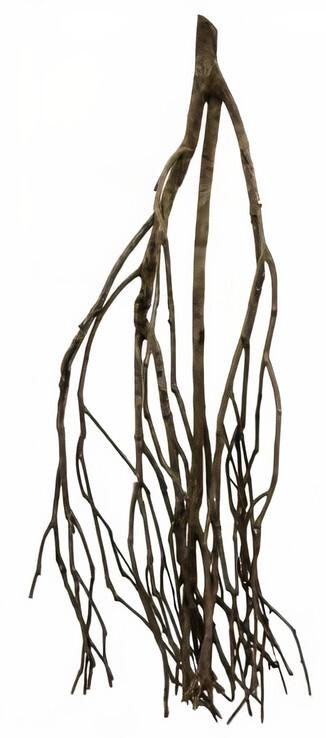 CeramicNature Terrarium Talawa Holz 30 cm braun