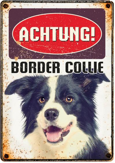 Plenty Gifts Hunde- Warnschild Border Collie 21 x 14,8 cm