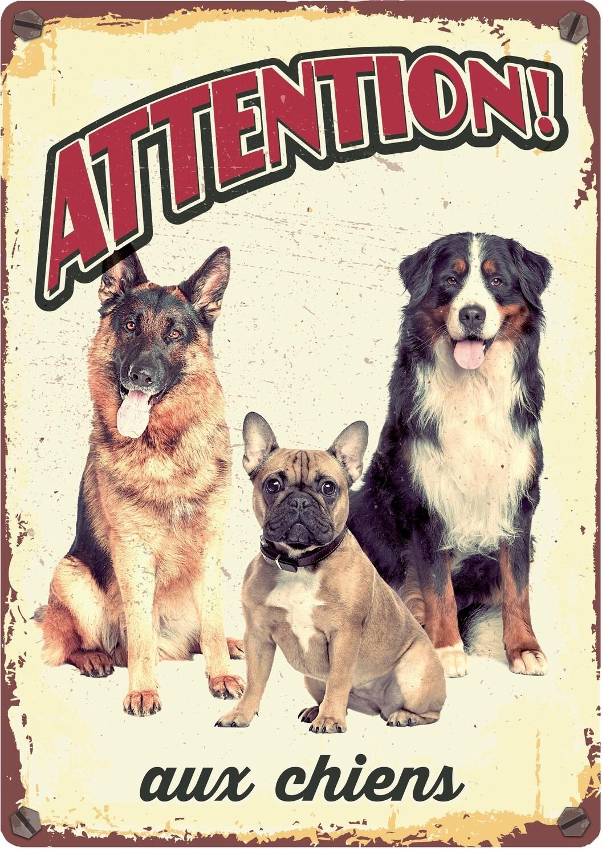 Plenty Gifts Hunde- Warnschild Attention Aux Chiens 21 x 14,8 cm