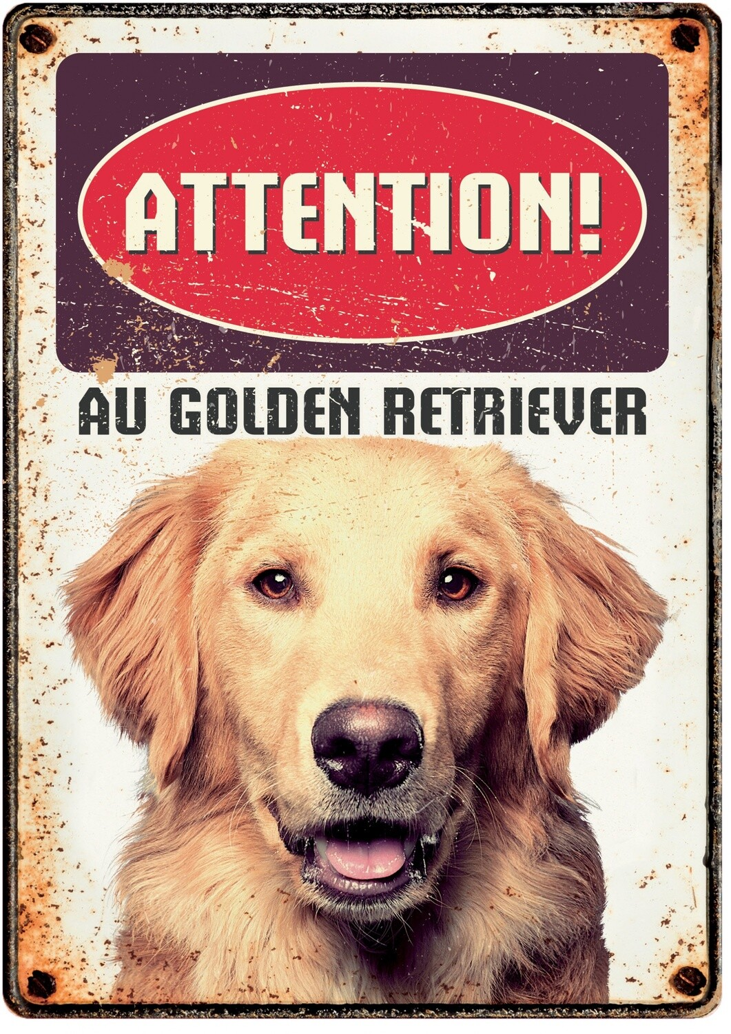 Plenty Gifts Hunde- Warnschild Attention Au Golden Retriever 21 x 14,8 cm