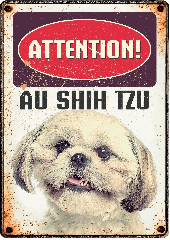 Plenty Gifts Hunde- Warnschild Attention Au Shih Tzu 21 x 14,8 cm