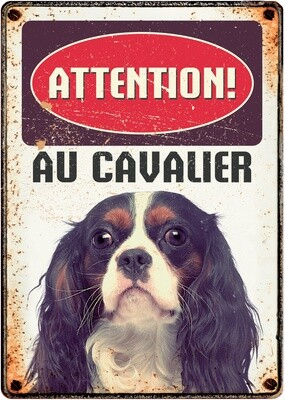 Plenty Gifts Hunde- Warnschild Attention Au Cavalier 21 x 14,8 cm