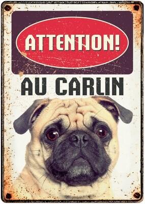 Plenty Gifts Hunde- Warnschild Attention Au Carlin 21 x 14,8 cm