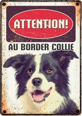 Plenty Gifts Hunde- Warnschild Attention Border Collie 21 x 14,8 cm