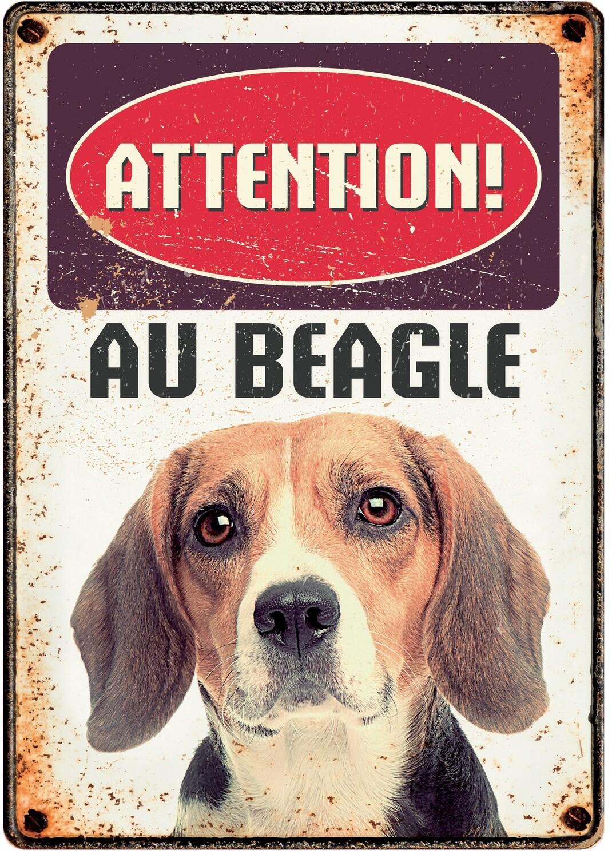 Plenty Gifts Hunde- Warnschild Attention Au Beagle 21 x 14,8 cm