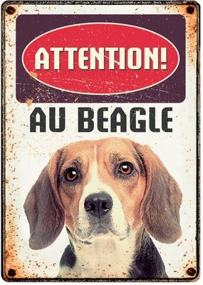 Plenty Gifts Hunde- Warnschild Attention Au Beagle 21 x 14,8 cm