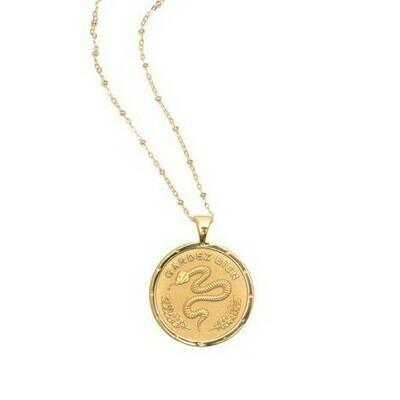 Jane Win Original PROTECT Coin Pendant