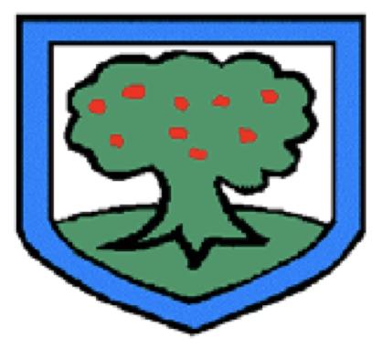 Holmer Green First School Strumming Club