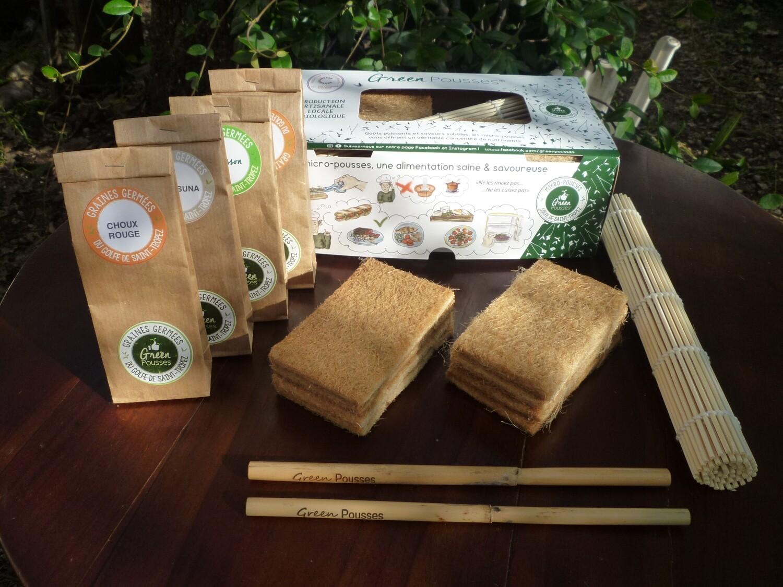 - Kit Green Box pour Débutant -  Chou Rouge, Cresson, Radis Daïkon, Trèfle