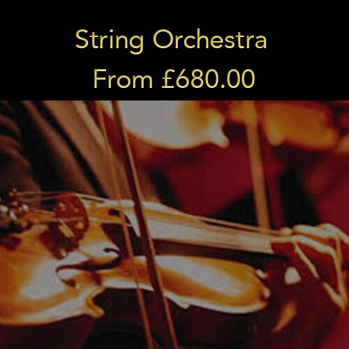 Option 6: String Orchestra (20% deposit)