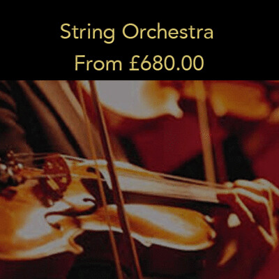 Option 6: String Orchestra (20% deposit)