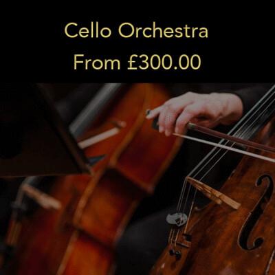 Option 3: Cello Orchestra (20% deposit)
