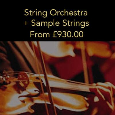 Option 7: String Orchestra + Sample Strings (20% deposit)