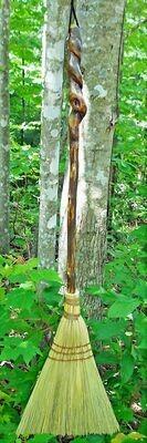 Large Honeysuckle Broom