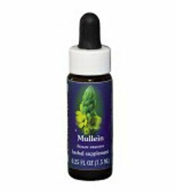 Mulllein Flower Essence