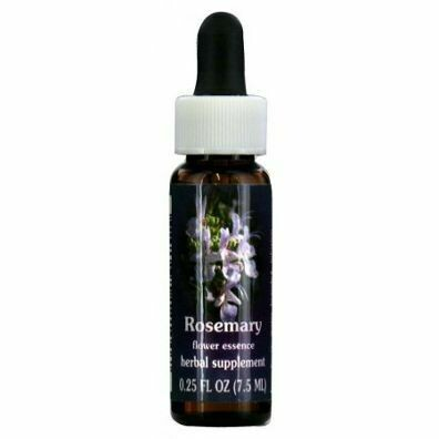 Rosemary Flower Essence 24515