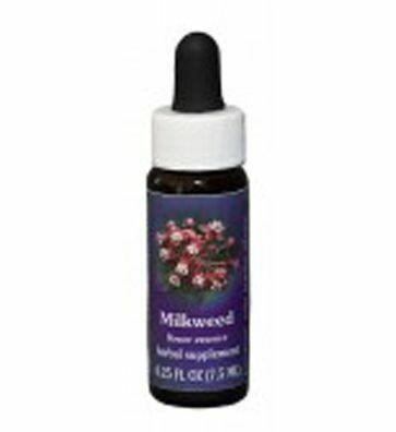 Milkweed Flower Essence