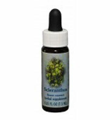 Scleranthus Flower Essence