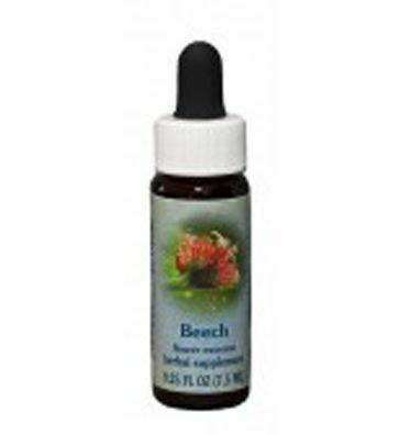Beech Flower Essence  29102