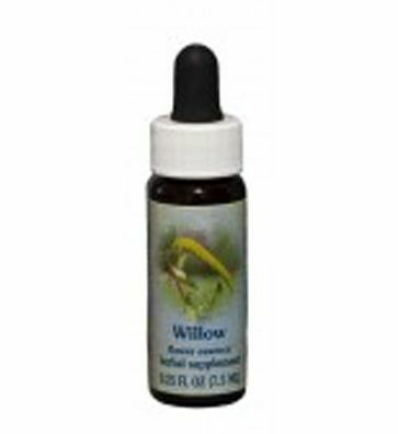 Willow Flower Essence